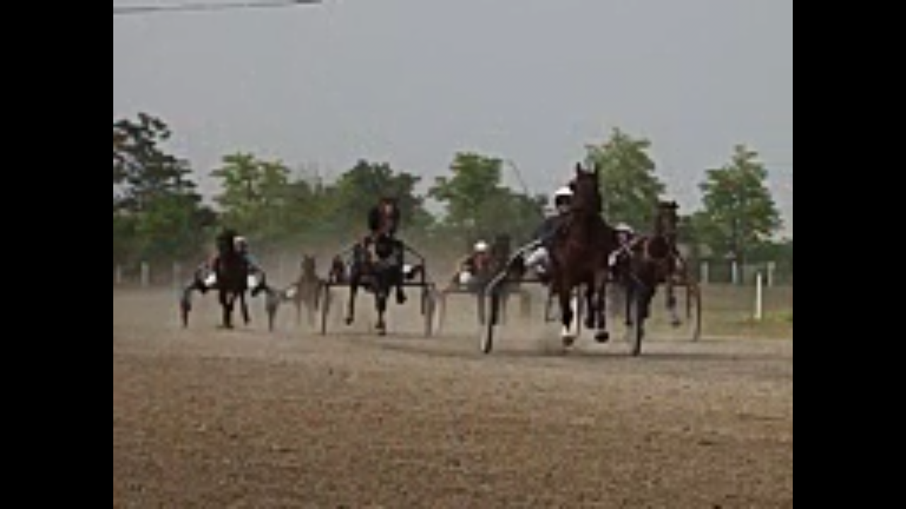 Božićne konjičke trke u Bogatiću