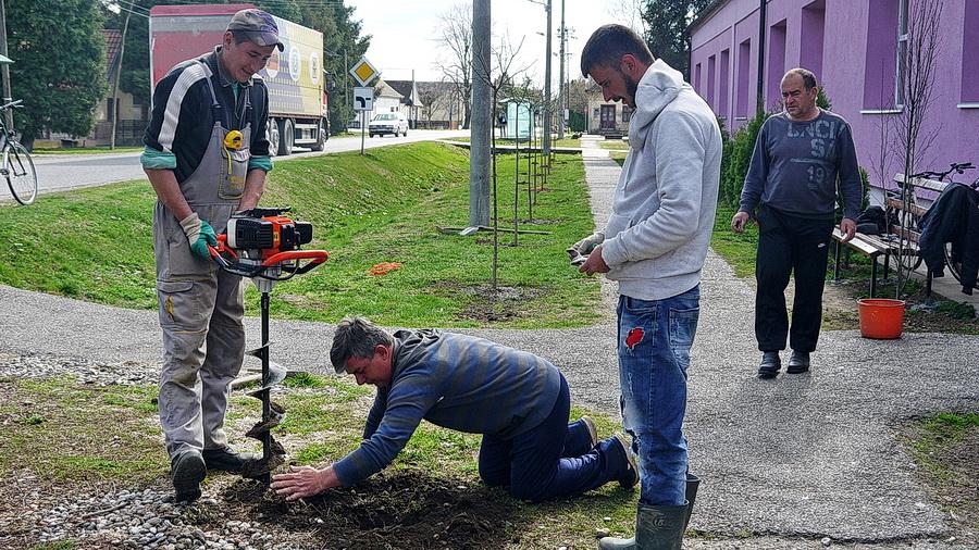 Škola u Crnoj Bari dobila nov drvored