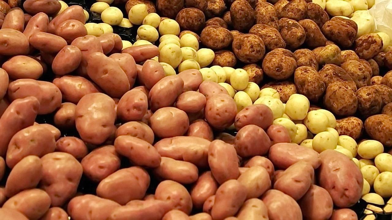 Osobine krompira